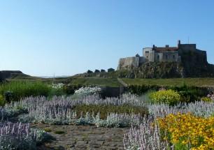 Lindisfarne garden by Jekyll