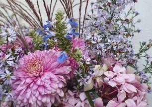 James-flowers-2015-Dixter