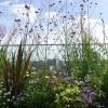 Brinsmead---Plants-detail